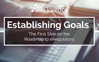 Establishing eRegulatory Goals