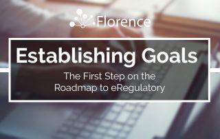 Establishing eRegulatory Goals